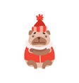 cute pug dog in warm clothes funny friendly vector image vector image
