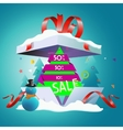 Discount on New Year s holidays vector image vector image