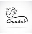 freehand cheetah head painting on white vector image
