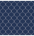 Nautical rope seemless fishnet pattern on dark vector image vector image