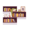 Set of retro rectangle bookshelves vector image vector image