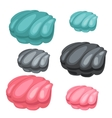 Three pearl shell blue black and pink color vector image vector image