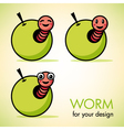 apple with a worm vector image vector image
