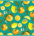 blooming oranges and lemons on the seamles vector image