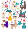 Cute llama funny alpaca cartoon characters