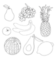 fruits for coloring book vector image vector image