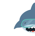 shark with diving equipment background vector image vector image