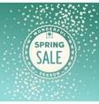 Spring SALE label design vector image