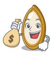 with money bag pumpkin seeds in a cartoon bowl vector image vector image