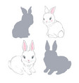 collection hand drawn rabbits realistic sketch vector image vector image