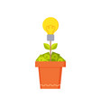 money tree and electric bulb vector image vector image
