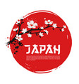 sakura on red background vector image vector image