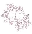 spring love birds vector image vector image