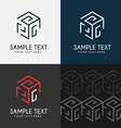 Thin Line Design Template Logotype Cube maze vector image