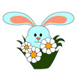 bunny with flowers on white background vector image vector image