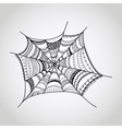 spider-web vector image