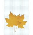 The maple leaf lies on a notebook vector image