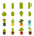 different cactuses icons set in flat style vector image vector image