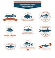 Perfect set of fish logos vector image vector image