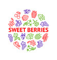 berries signs thin line round design template ad vector image