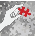 Final piece of puzzle vector image vector image