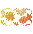 frame with fruits pattern vector image