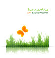 green grass border and orange butterfly on white vector image