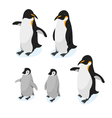 Isometric 3d realistic style set of penguins vector image vector image
