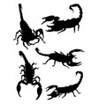 scorpions gesture animal silhouette vector image vector image