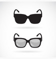 sunglasses design on white background vector image vector image