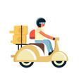 courier with food boxes on scooter vector image