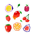 exotic fruit set stylized geometric design vector image vector image