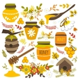 Honey Hand Drawn Elements vector image vector image