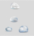 realistic water drops isolated set vector image vector image