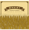 Retro wheat harvest card vector image
