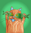 cat with fish on its eyes vector image vector image
