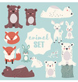 collection cute forest and polar animals vector image