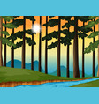 forest scene at sunset vector image vector image