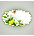 Fresh spring background with grass dandelions and vector image vector image