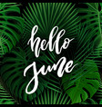 hello june brush lettering vector image vector image