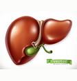 liver medicine internal organs 3d icon vector image vector image