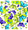 pattern with butterflies 2 vector image vector image