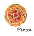 round pizza vector image
