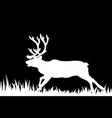 silhouette of deer in the grass vector image vector image