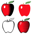 apple line variant vector image