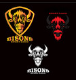 bisons vector image