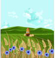 green fields spring background decor vector image vector image