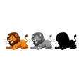 set of lion character vector image