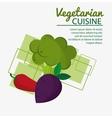 chili pepper broccoli fresh natural vegetarian vector image vector image