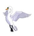 Flying swan vector image
